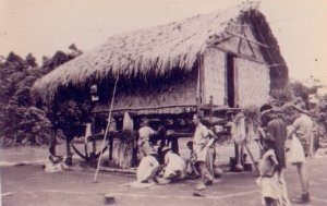 native hut in New Guinea
