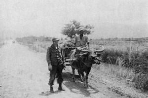 32-Luzon(1945)-2