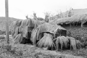 camouflaged command post