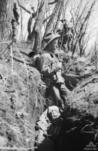 C Company, 3 RAR, Occupying a Chinese dug trench