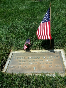 Mustang Koji was kind enough to take this for me after he placed a flag and said a prayer.
