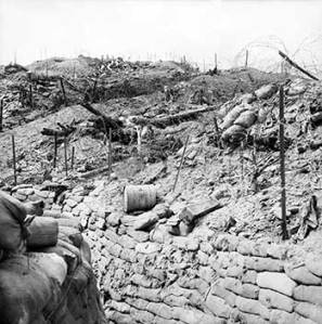 The view from a trench.