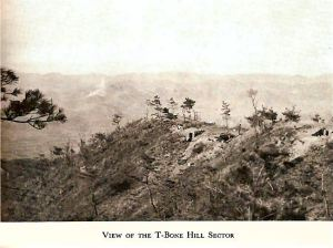 T-Bone Hill sector