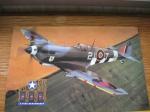 Curtis P-40