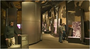 The 'impersonal chaos of war' display in the Hall of Honor