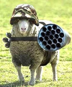 military-humor-funny-sheep-where-is-big-bad-wolf.jpgnow to get him off the ground...