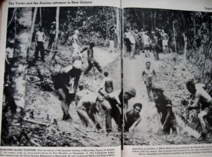American and Australian troops worked together to build a road in the jungle