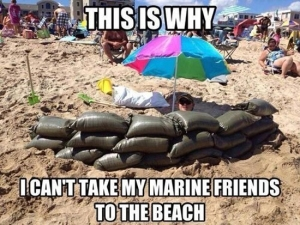 funny-pictures-mariens-on-the-beach