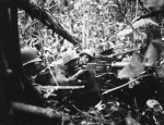 Marines on Cape Gloucester