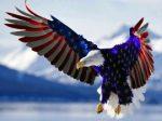 American-Flag-Eagle2