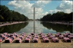 flag-draped-american-caskets-on-national-mall