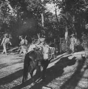 Chindits, 77th Division