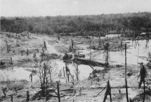 Causeway with 2 damaged Sherman tanks, Peleliu