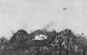 Napalm strike on Five Sister, Peleliu